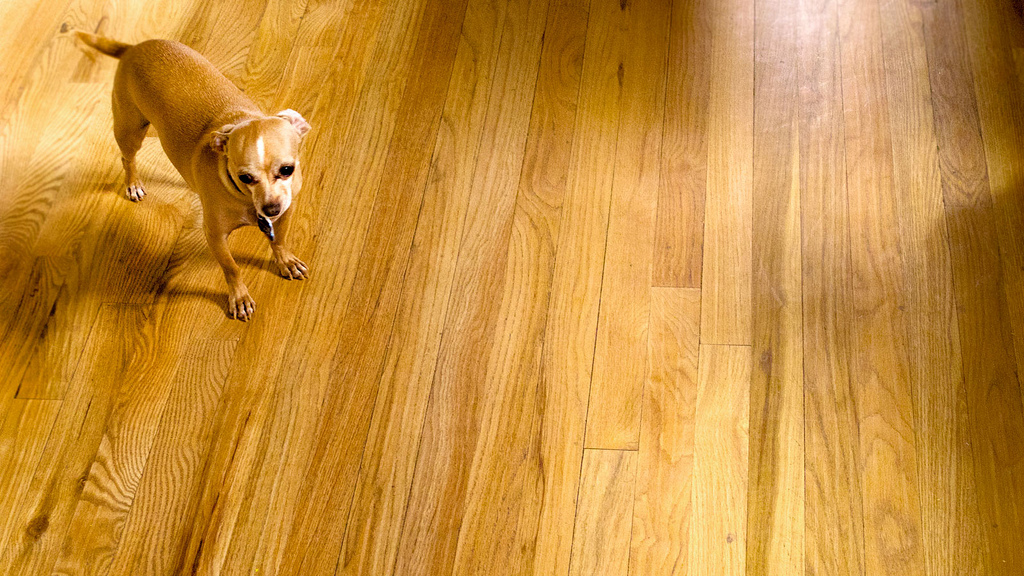 Choosing the right wood flooring grades will make your home stand out
